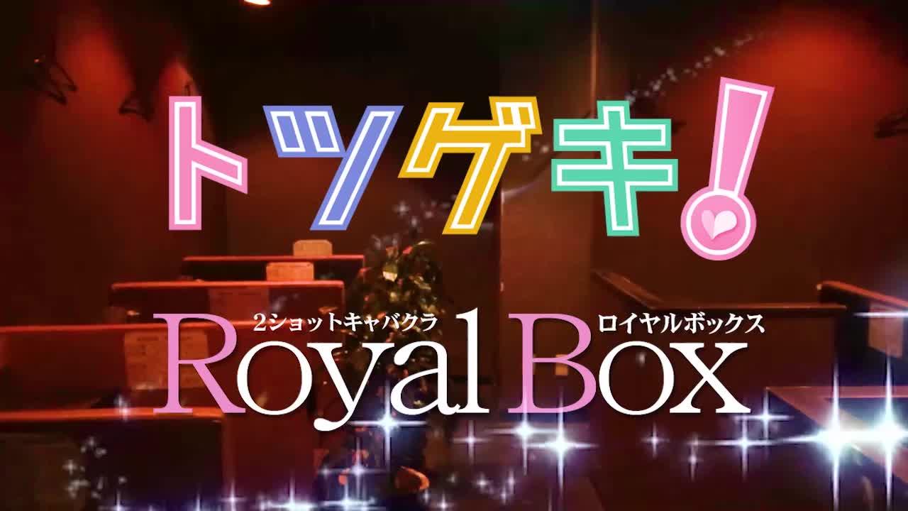 Royal Box(ロイヤルボックス)求人動画